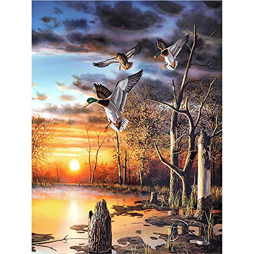 5D DIY Diamond Painting Set Decorating Cabinet Table Stickers Crystal Rhinestone Diamond Paintings Pictures for Study Room,Sunset Mallard