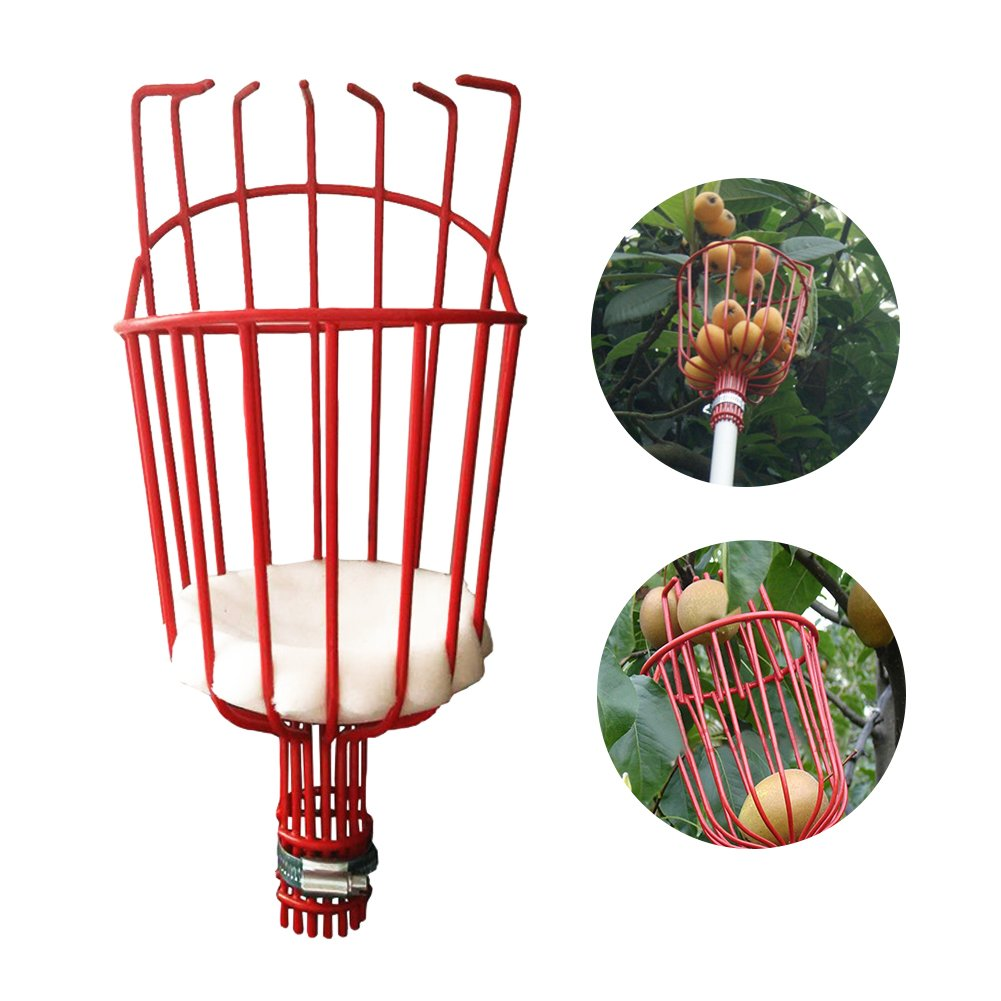 Ragdoll50 Telescoping Fruit Picker, Outdoor Lightweight Aluminum Pole Deep Basket Gardening Picking Tool Convenient Fruit Picker for Apple Pear Harvesting
