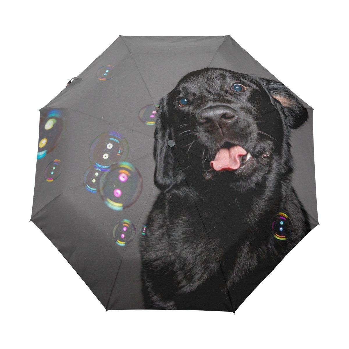 Senya Saobao防風と防雨トラベル傘with自動開いて閉じFoldingブラック犬in Showerポータブル折りたたみ式太陽雨傘 B07FJLS4MX