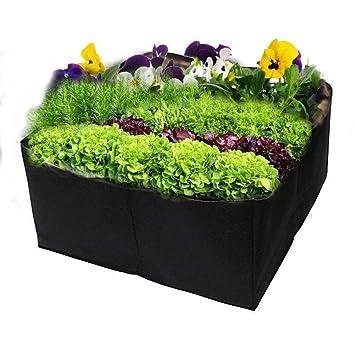 Amazon.com: Cesta de jardín profesional para vegetales ...