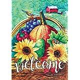 Toland Home Garden 1012197 Fall Basket Welcome 28 x 40 Inch Decorative, Autumn Harvest Birds, House Flag