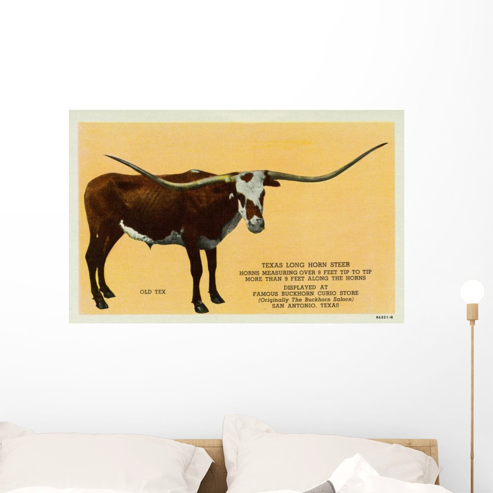 Magnificent Longhorn Wall Decor Images - The Wall Art Decorations ...