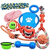 Nolsen Dog Toys Gift Set 10 Pack Puppy Chew Rope Squeak Toy for Medium to Small Doggie