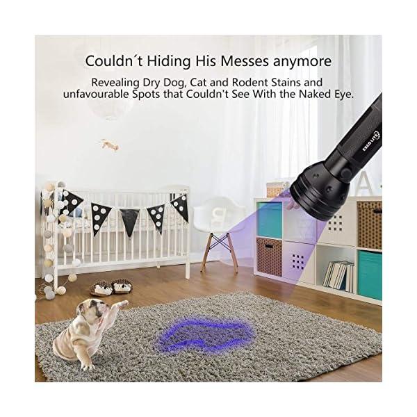 Escolite UV Flashlight Black Light, 51 LED 395 nM Ultraviolet Blacklight Detector for Dog Urine, Pet Stains and Bed Bug 7