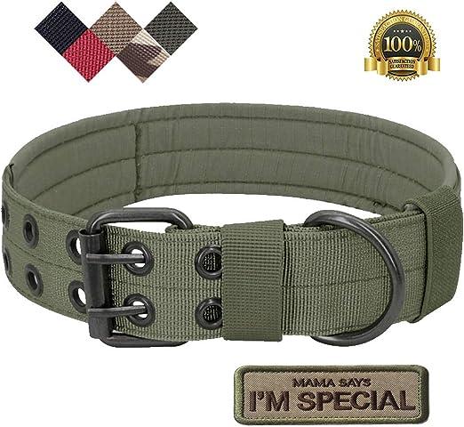 S.Lux - Collares tácticos para perros, nailon militar ajustable con hebilla de metal en D para entrenamiento de perros, colección de collares de martingala clásicos de color sólido: Amazon.es: Productos para mascotas