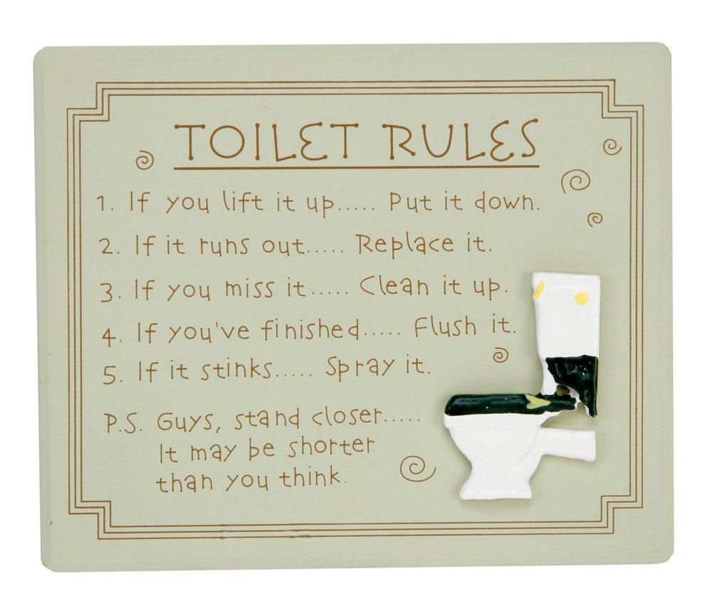 Amazon.com: Quirky Toilet Rules Bathroom Wall Plaque By Haysom ...