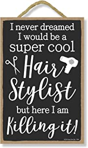 Honey Dew Gifts Inspirational Wooden Signs, I Never Dreamed I Would Be A Super Cool Hairstylist But Here I Am Killing It, Wood Sign Decor , Wooden 7 inch by 10.5 inch Wood Plaque, Wall Art, Wood Home