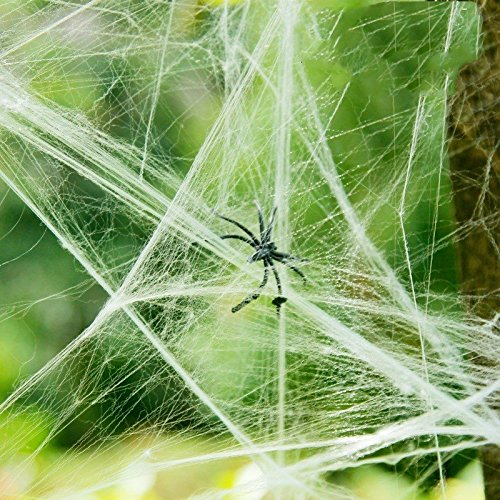 Halloween Spider Web White Cob Webs(200g)with 30 Pack Fake Plastic Spiders Stretch Spider Webs Indoor /& Outdoor Spooky Spider Webbing for Halloween Decorations Fnbgl