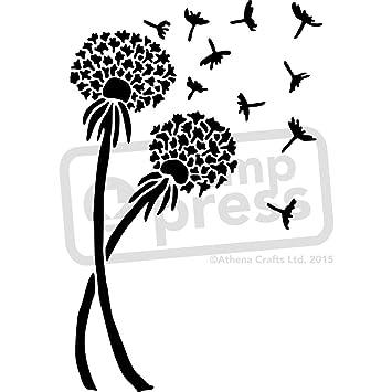 amazon com a5 dandelions wall stencil template ws00013565