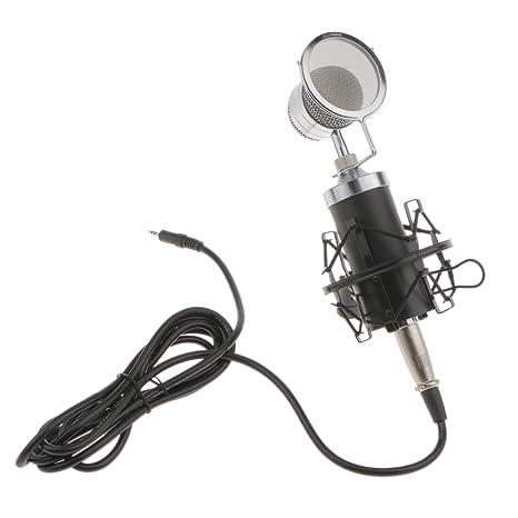 Amazon Com Jili Online Condenser Wired Microphone Mic Sound Studio