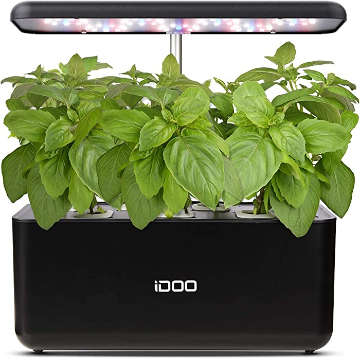 Top 10 Planted Herb Garden