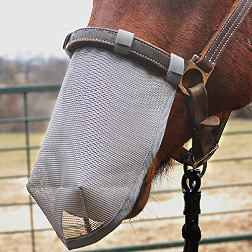 Cashel Crusader Horse Nose Net Mask, Protects from Biting Insects and 70% UV Sun Protection - Size: Medium, 11 inches Long