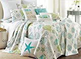 Biscayne King Quilt & 3 Standard Pillow Shams Coastal Fish Sea Shells Sand Dollars Aqua Green