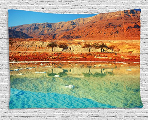 Tapestry by, Dead Sea Salt Shore in Israel Mountains Desert Scenic Photo, Wall Hanging for Bedroom Living Room Dorm, 60WX40L Inches, Redwood Light Blue Light Green ()