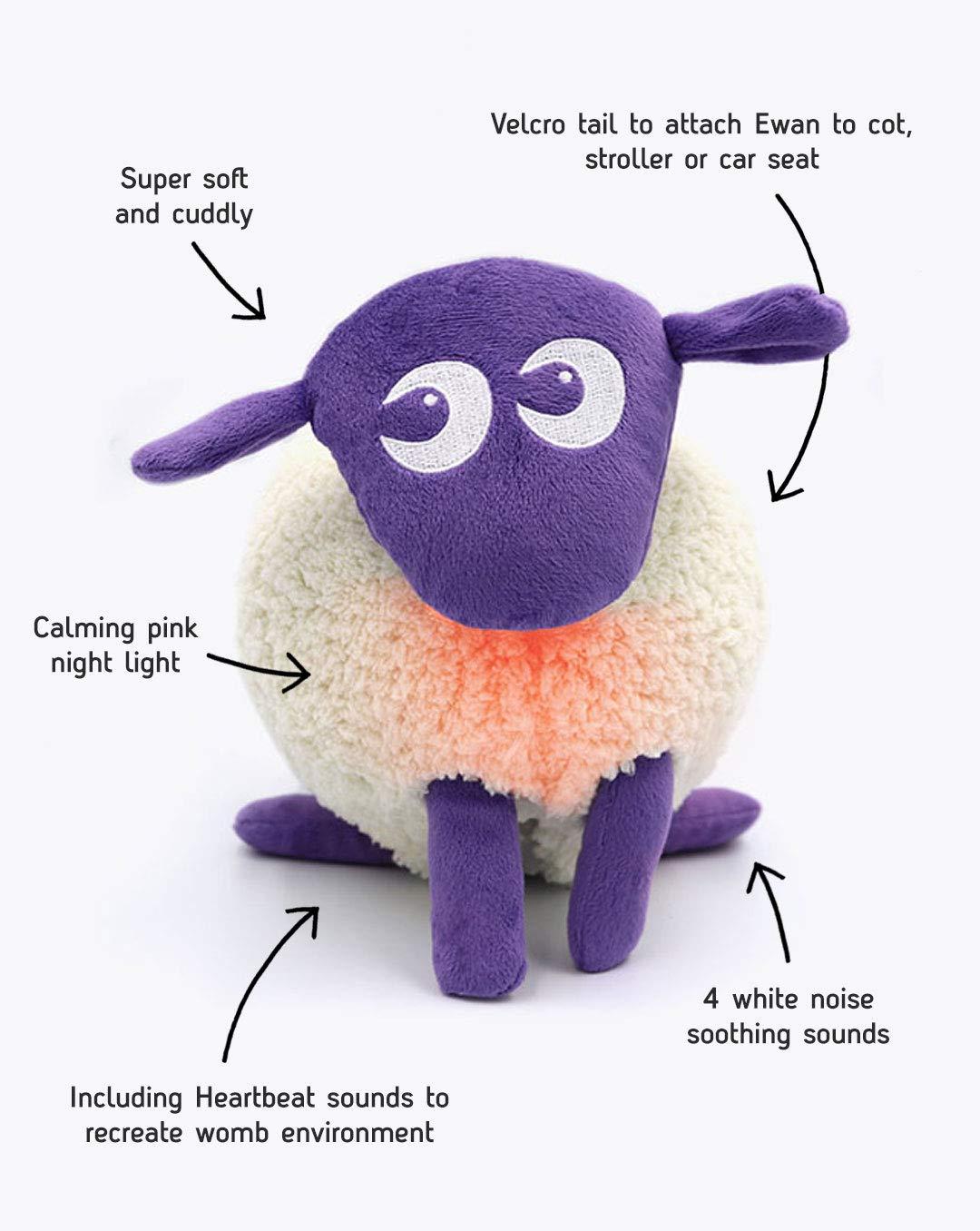 Amazon Com Sweet Dreamers Ewan The Dream Sheep Purple Crib