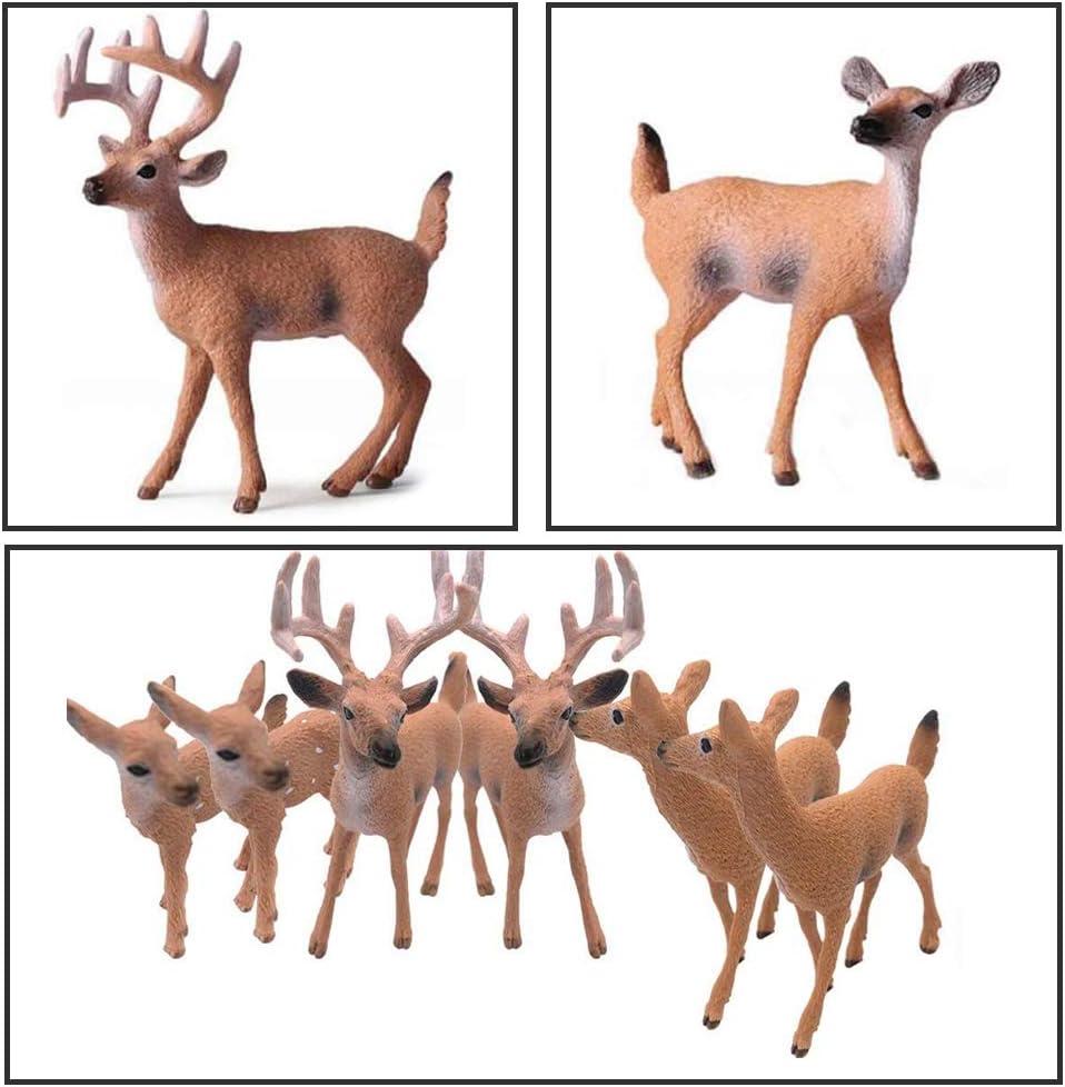 IWILCS Hirsch Spielzeug Tierfiguren Wei/ßwedelhirsch Familie Figuren 6 St/ück Realistisch Wei/ßwedelhirsch Aktionsmodell Hirsch Figuren Kuchendeckel Figuren Tierfiguren