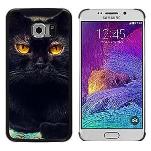 Be Good Phone Accessory // Dura Cáscara cubierta Protectora Caso Carcasa Funda de Protección para Samsung Galaxy S6 EDGE SM-G925 // Black Cat Feline Orange Bombay Chartreux