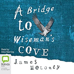 A Bridge to Wiseman's Cove Audiobook