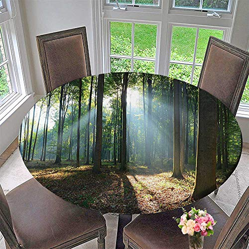Mikihome Chateau Easy-Care Cloth Tablecloth Decor Collection Forest Morning Haze City Park Ecology Hiking Traveling Destination Scenery Photo for Home, Party, Wedding 43.5