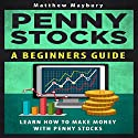 Penny Stocks: A Beginner's Guide to Penny Stocks Audiobook by Matthew Maybury Narrated by Jason Powell