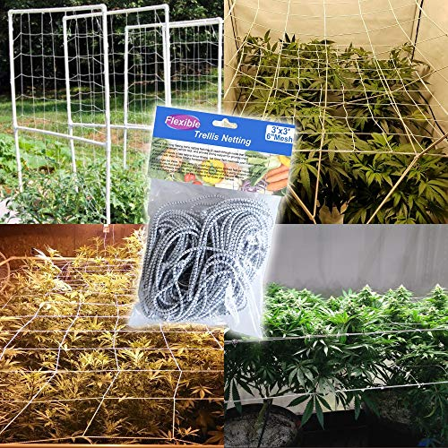 BloomGrow 1PC 3FTx3FT Heavy-duty Flexible Elastic Trellis Netting Trellis Net Plant Support Net Grow Tents Support Climbing, Fruits, Vegetables Flower (1 PC) by BloomGrow