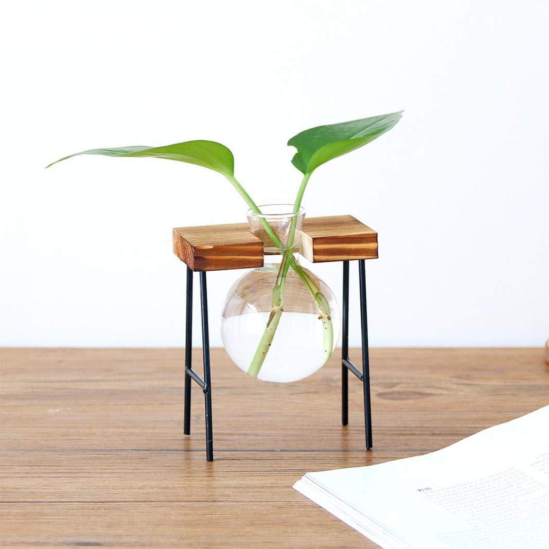 TAOtTAO creative pianta idroponica trasparente vaso cornice in legno caffetteria decorazione della stanza, A 1.5x6X10 CM