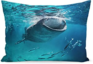 Semtomn Throw Pillow Covers Blue Cebu Whale Shark Eating at The Fish Giant Mouth Open Diving Pillow Case Cushion Cover Lumbar Pillowcase Decoration for Couch Sofa Bedding Car 20 x 36 inchs