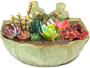 Dahlia Twittering Song Birds Handmade Ceramic Succulent Planter/ Plant Pot/ Flower Pot/ Bonsai Pot