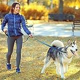 tobeDRI Heavy Duty Dog Leash - Comfortable Padded