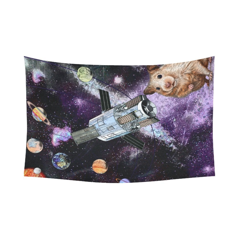 Artsadd Wall Art Home Decor Tapestry Animal Marmots in Space Galaxy Solar System Cotton Linen Wall Tapestry Wall Hanging 90''x 60''