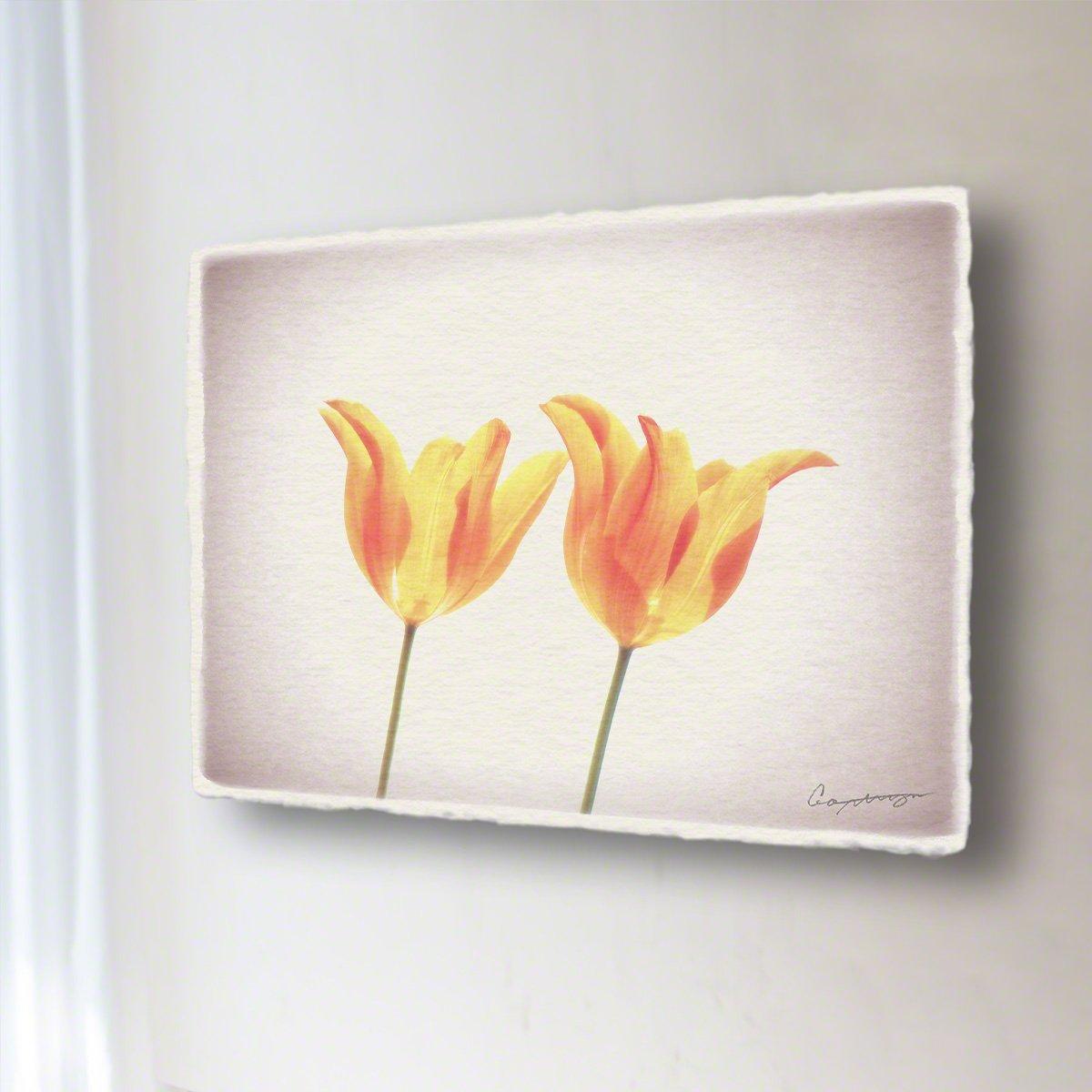 和紙 アートパネル 「透けるオレンジ色のチューリップ」 (60x45cm) 花 絵 絵画 壁掛け 壁飾り インテリア アート B07F1DKMHP 16.アートパネル(長辺68cm) 48000円|透けるオレンジ色のチューリップ 透けるオレンジ色のチューリップ 16.アートパネル(長辺68cm) 48000円