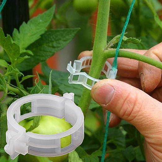Yanhonin - 50 Unidades de 25 mm para Plantas de jardín, con Clip ...