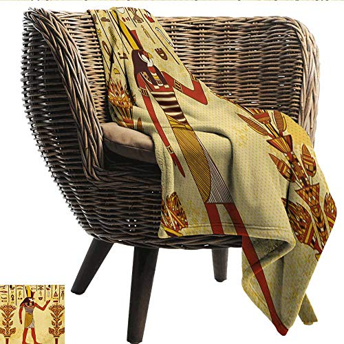 Davishouse Ethnic Blanket Sheets Ancient Egyptian Hieroglyph with Pharaoh Retro Myth Papyrus Graphic Fall Winter Spring Living Room 60