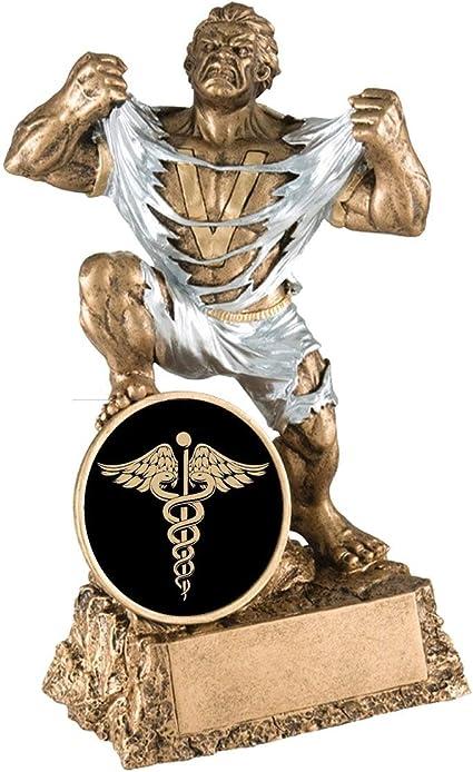 FEMALE NURSE AWARD METAL NURSE NURSE TROPHY MEDICAL CADUCEUS  # m