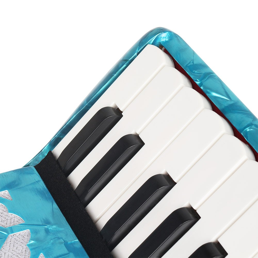 ammoon 22-Key 8 Bass Piano Accordion with Straps Gloves Cleaning Cloth Educational Music Instrument for Students Beginners Childern by ammoon (Image #6)