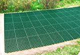 "Techno Earth ( 1.9"" Depth ) Permeable Grass"