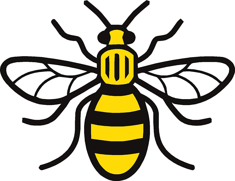 Full Colour Manchester Worker Bee Vinyl Decal Sticker Car Bedroom Mancunian Laptop Van