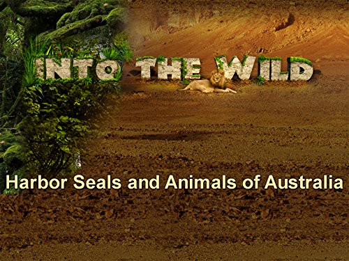 - Harbor Seals and Animals of Australia