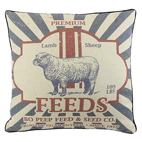 Amazon.com: juniperlab Farmhouse almohadas Shabby Chic ...