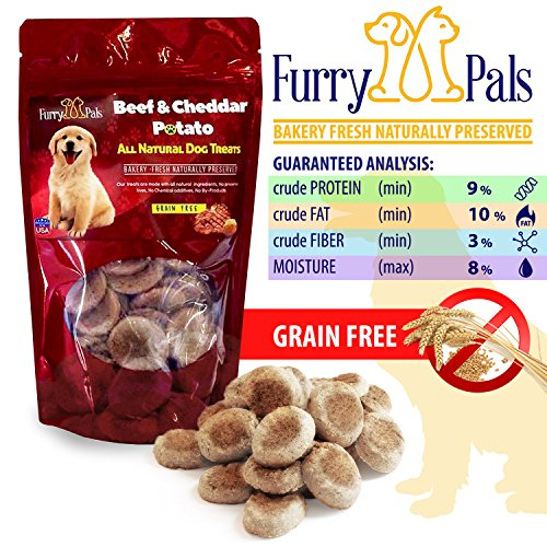 Grain Free Dog Treats – Beef and Cheddar Potato – All Natural – Manufactured in The USA – Gluten Free Dog Treats by Furry Pals (Furry Pal)