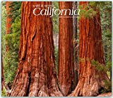 California, Wild & Scenic 2019 12 x 14 Inch Monthly Deluxe Wall Calendar, USA United States of America West Coast State Nature