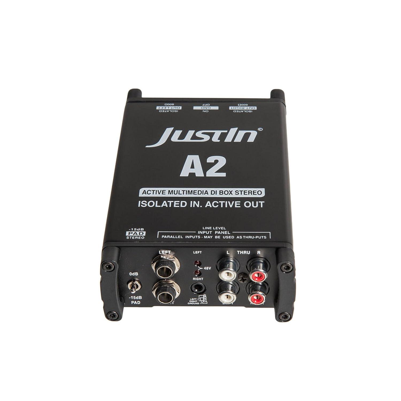 A2 activa Multimedia de caja DI estéreo, con Pad y Ground Lift: Amazon.es: Instrumentos musicales