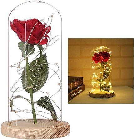 MRXUE Fleur Artificielle Nuit lumière éternelle Vie Fleurs