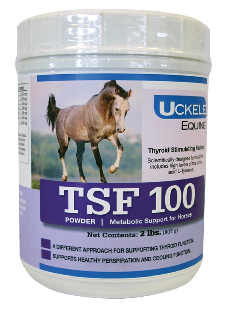 Uckele TSF 100 Horse Supplement, 2-Pound