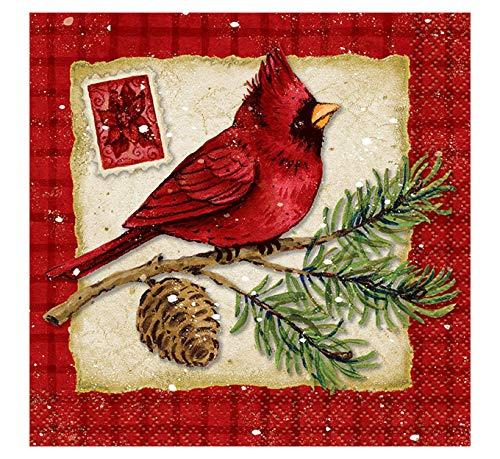 Christmas Beverage Napkins Paper - Cardinal Christmas Beverage Napkins, 16ct
