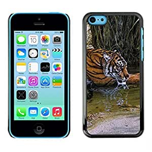 New Fashion Case BLOKK case cover / Apple iphone 6 plus / tiger river cute fur Africa nature green / Slim Black LRukoQIcPSP Plastic case cover case cover Armor