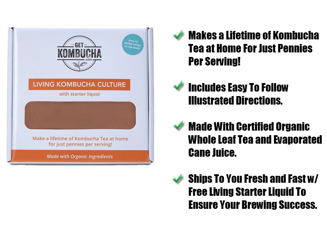 Kombucha Continuous Basic Brew Kit System - Drink Kombucha Tea On Tap (Making A Lifetime Of Home Brewed Kombucha Tea Easy For You) GetKombucha® - Includes 2.5 Gallon Porcelain Brewing Vessel w/ Handcrafted Wood Brewer Stand - Non Dehydrated HUGE Organic  by Get Kombucha (Image #5)