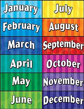amazon co jp months of the year chart ホーム キッチン