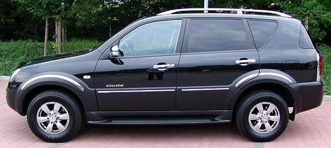 Accesorios Rodius Puerta Mango paneles tapas protectora para puerta asas paneles cromo Door Catch Molding: Amazon.es: Coche y moto