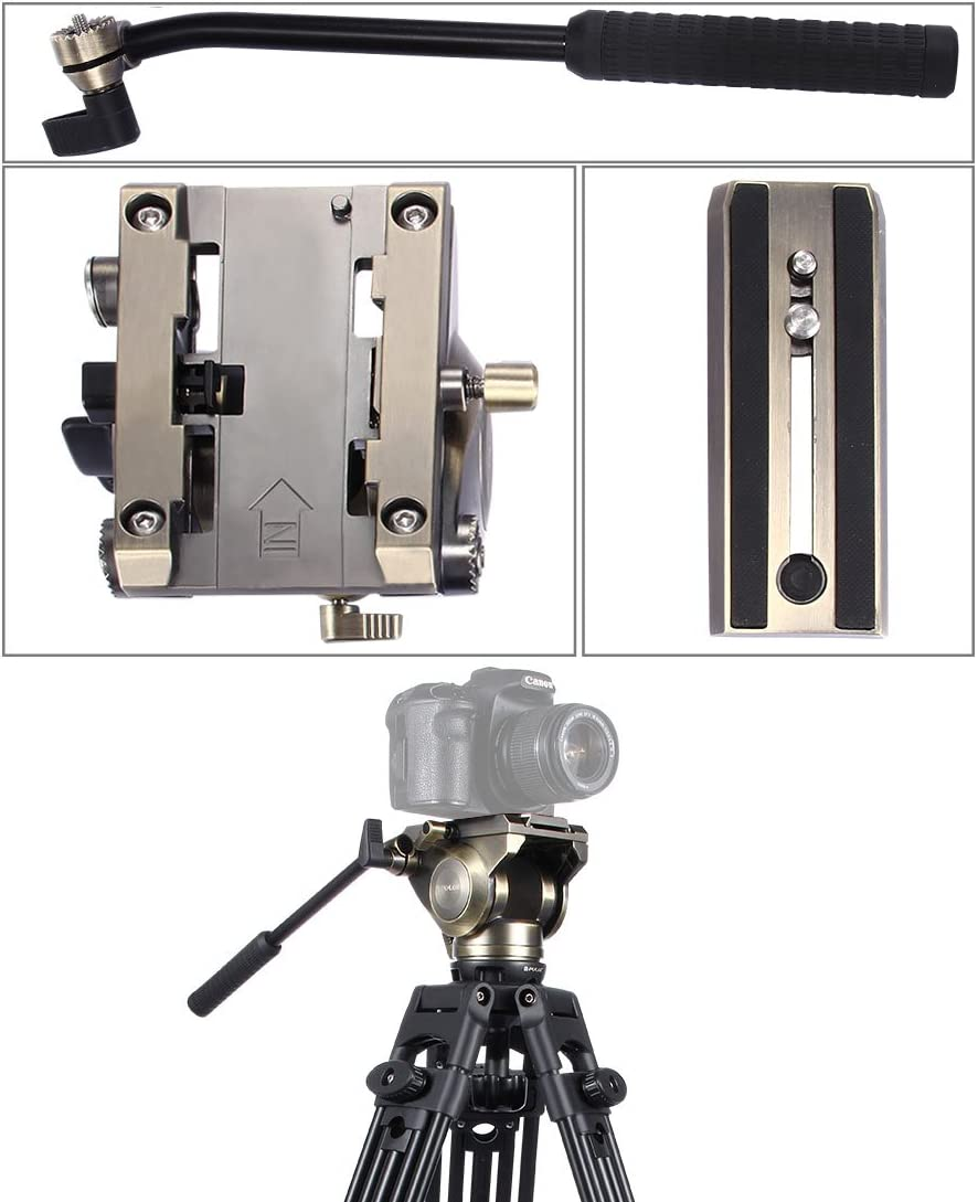 Large Size Durable JINGZ Heavy Duty Video Camera Tripod Action Fluid Drag Head with Sliding Plate for DSLR /& SLR Cameras Color : Gold